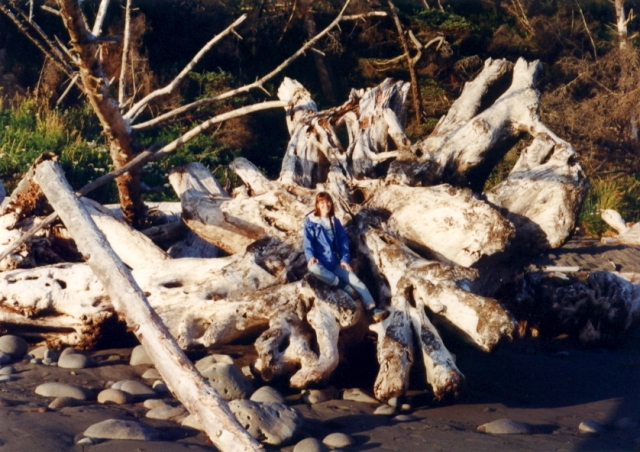 16 - Pacific NW Driftwood - 1995